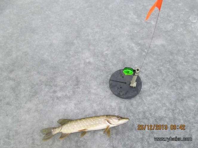 Жерлицы для зимней рыбалки на щуку: описание и монтаж самодельной конструкции своими руками