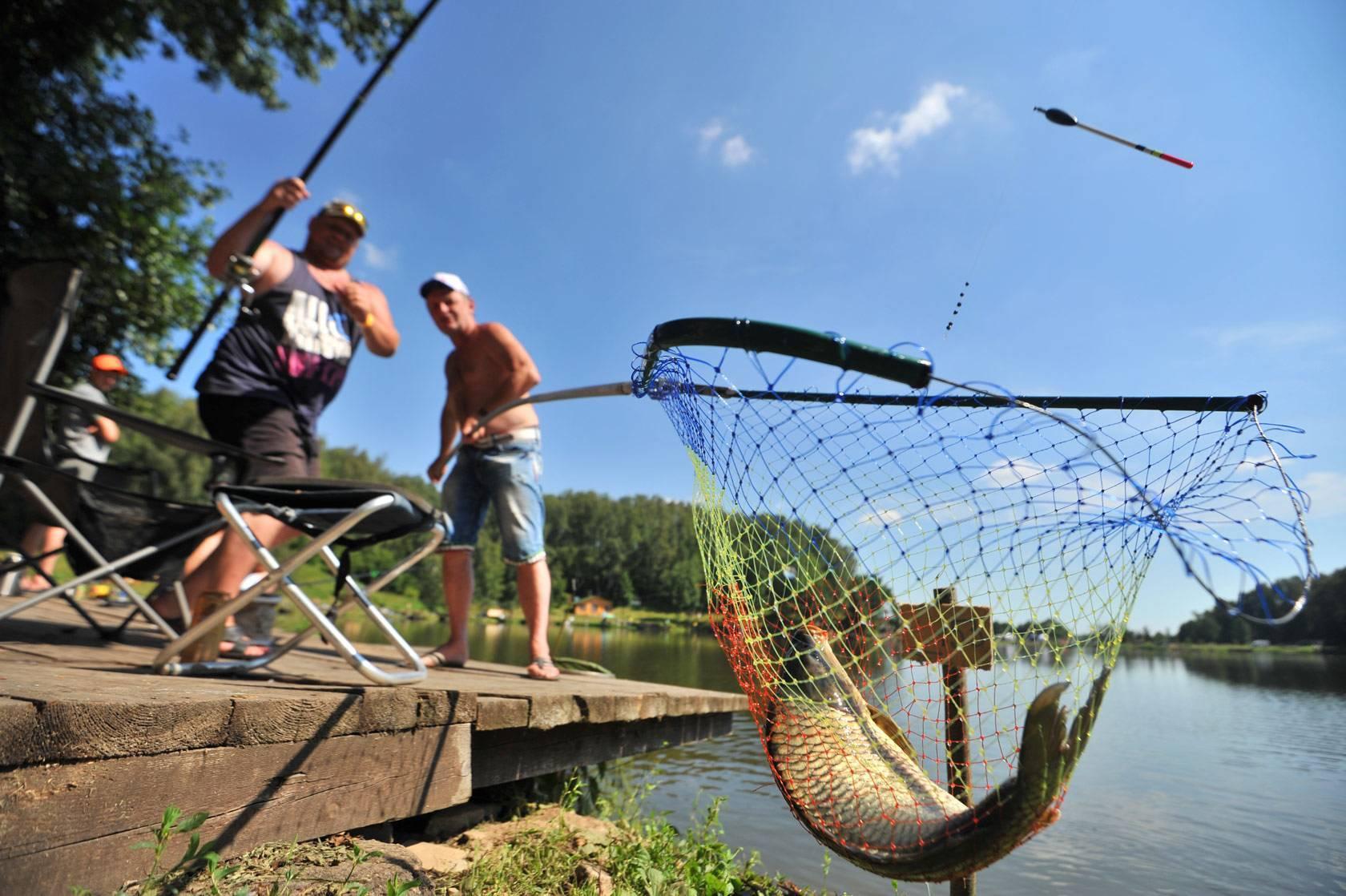 10 лучших платных прудов для рыбалки в подмосковье