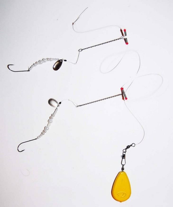 Рыба пеленгас — фото и описание, оснастки для ловли, прикормки своими руками, на что клюет