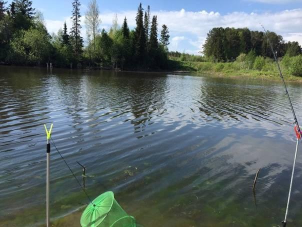 Рыбалка в завьяловском районе (удмуртия)