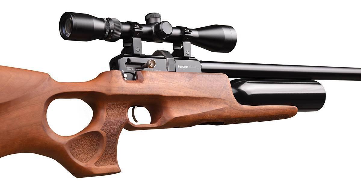Пневматические винтовки калибром 5,5 мм - описание и лучшие модели