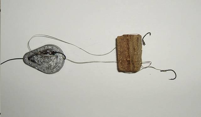 Ловля сазана на жмых: снасть и особенности рыбалки