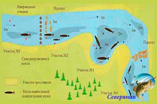 Спиннинг для джига на судака: необходимые параметры, лучшие модели, отзывы рыбаков