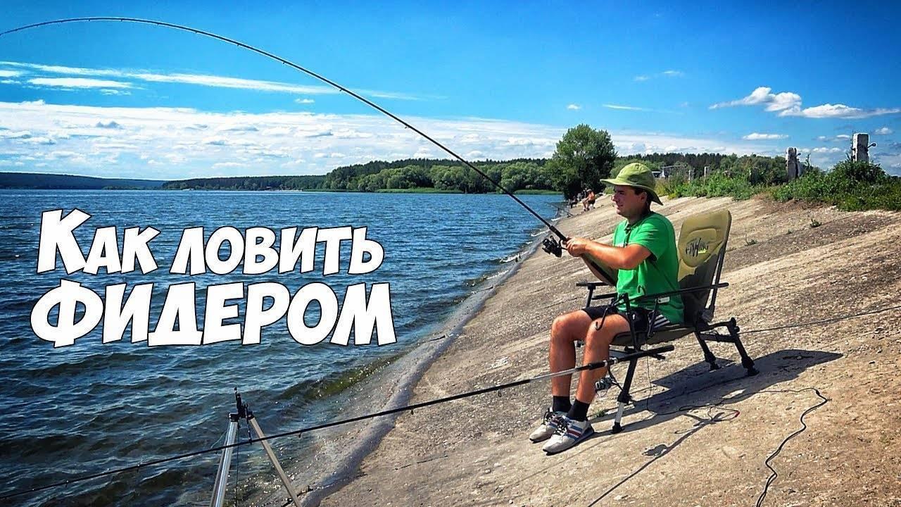 Ловля на фидер: как ловить, видео для начинающих, устройство снасти для рыбалки