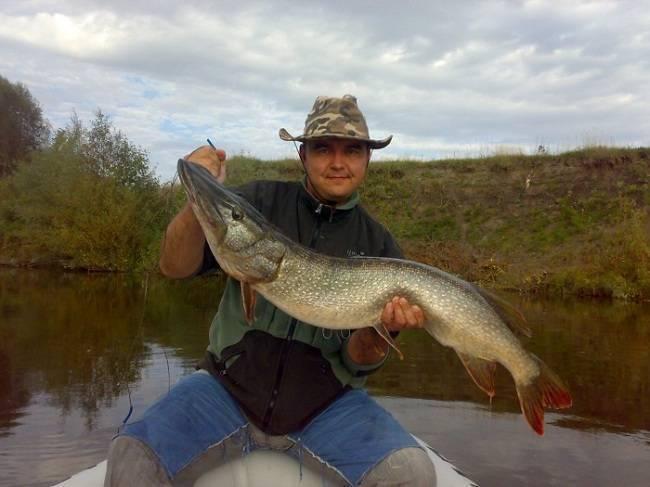 Рыбалка на Суре — какие виды водятся в реке Мордовии