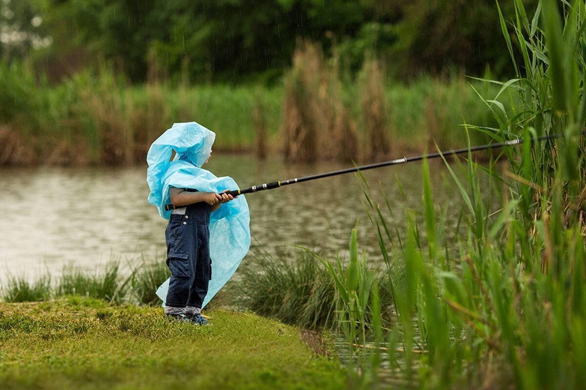 При каком ветре лучше клюет рыба – сила и направление