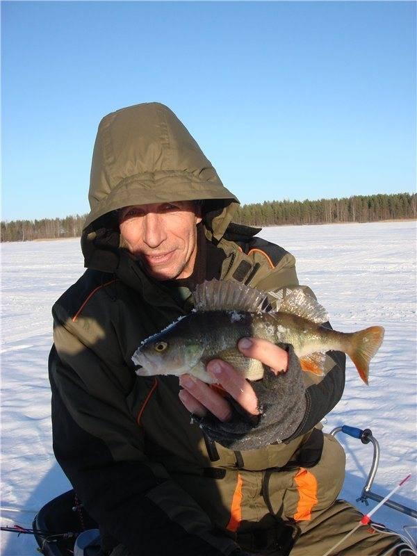 Рыбалка в псковской области: особенности ловли на озере жижицкое, але, в реке великая