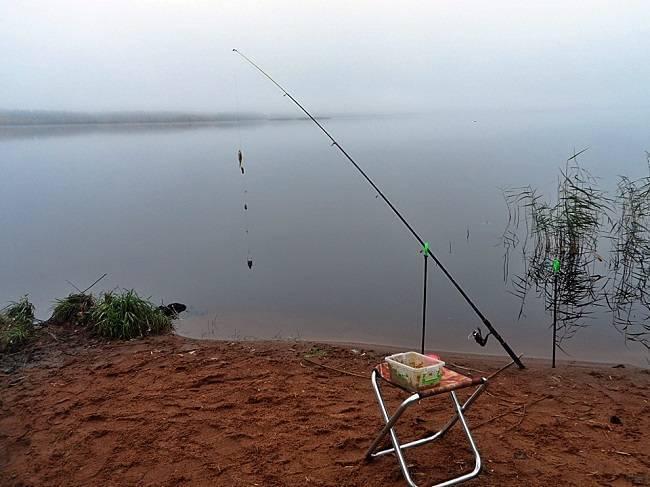 Подбираем снасти для рыбалки в астрахани