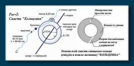Принципы и техника рыбалки на кольцо