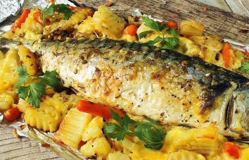 Жерех рыба – как приготовить, рецепты