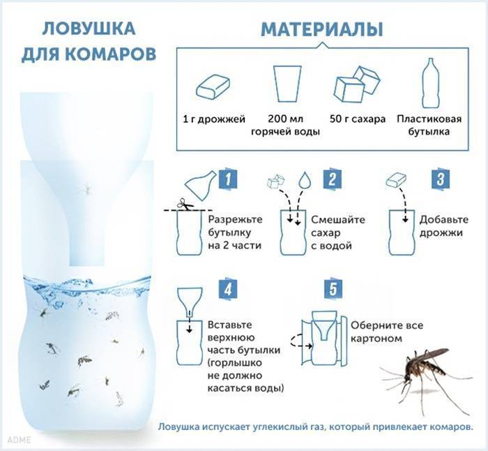 Народные средства от комаров: рецепты для приготовления в домашних условиях своими руками из подручных средств