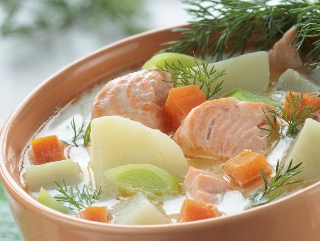 Рыбный суп из форели