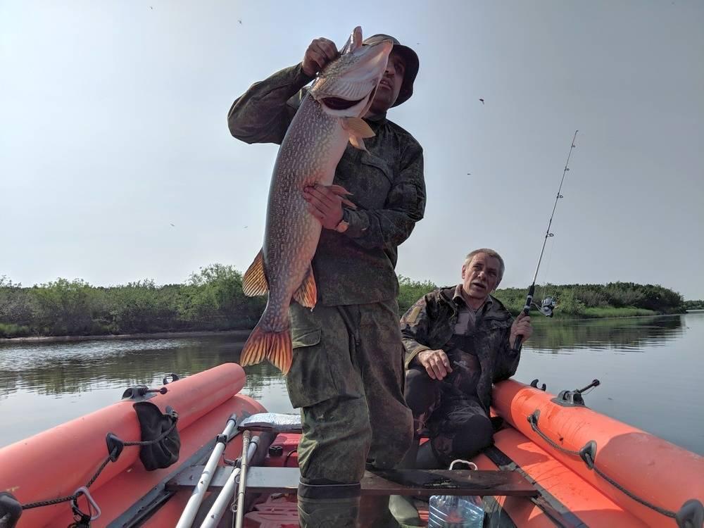 Бесплатная рыбалка в подмосковье, карты водоемов, рыбные места
