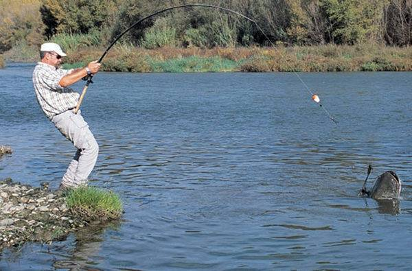 Ловля сома в сентябре и октябре: снасти, приманки, ловля на квок