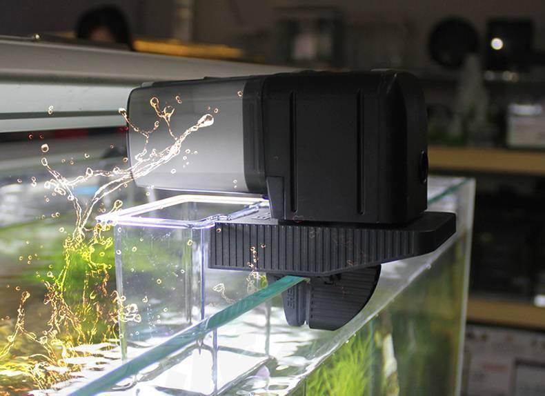 Автокормушка для аквариумных рыб: принцип работы, типы устройств