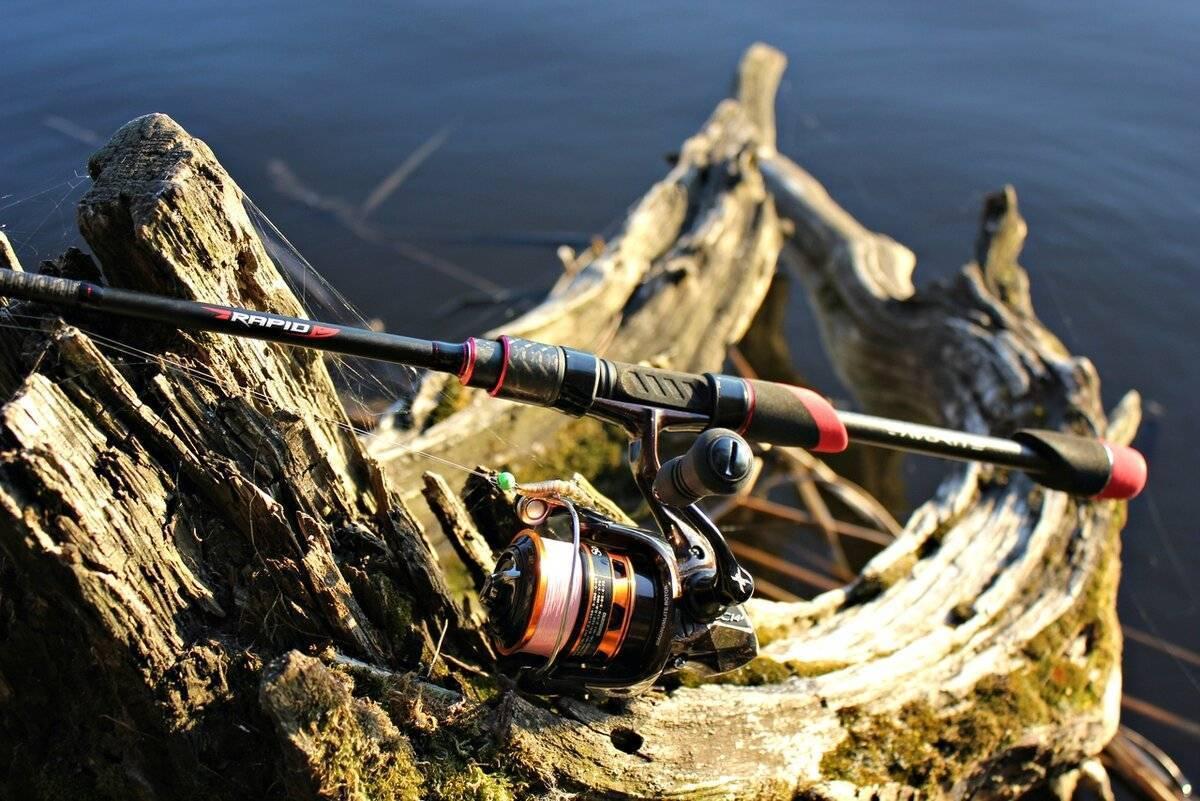 Лучшие рыболовные лески