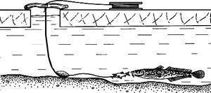 Закидушка на налима: ловля и изготовление своими руками