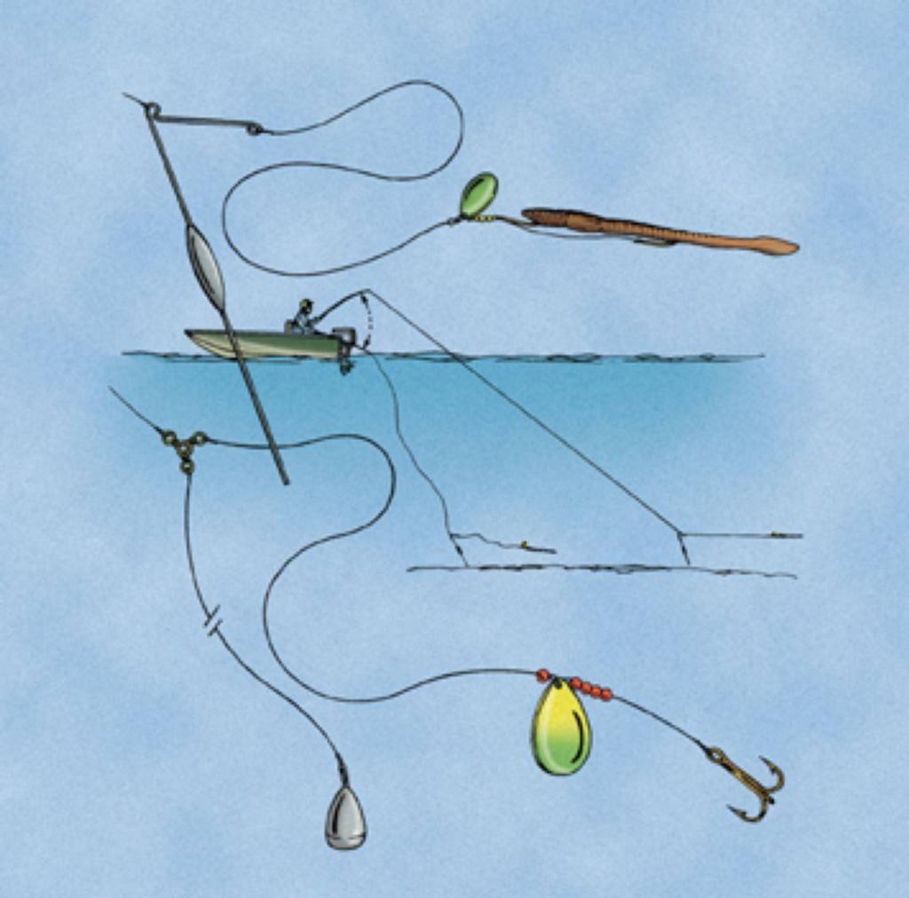 Секреты ловли голавля в разное время года