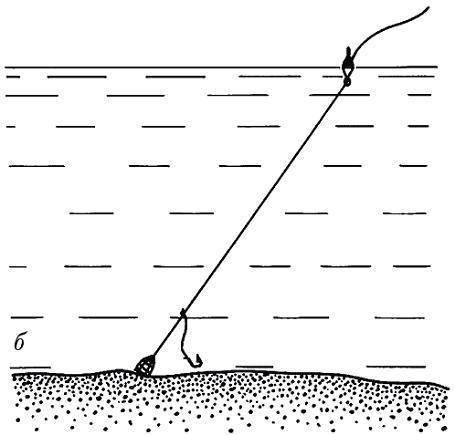 Обзоры водоёмов