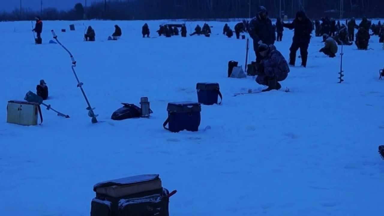 Рыбалка в егорьевске: платный рыбхоз в егорьевском районе московской области