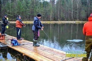 Где сейчас ловят рыбу в ленинградской области | санкт-петербург центр