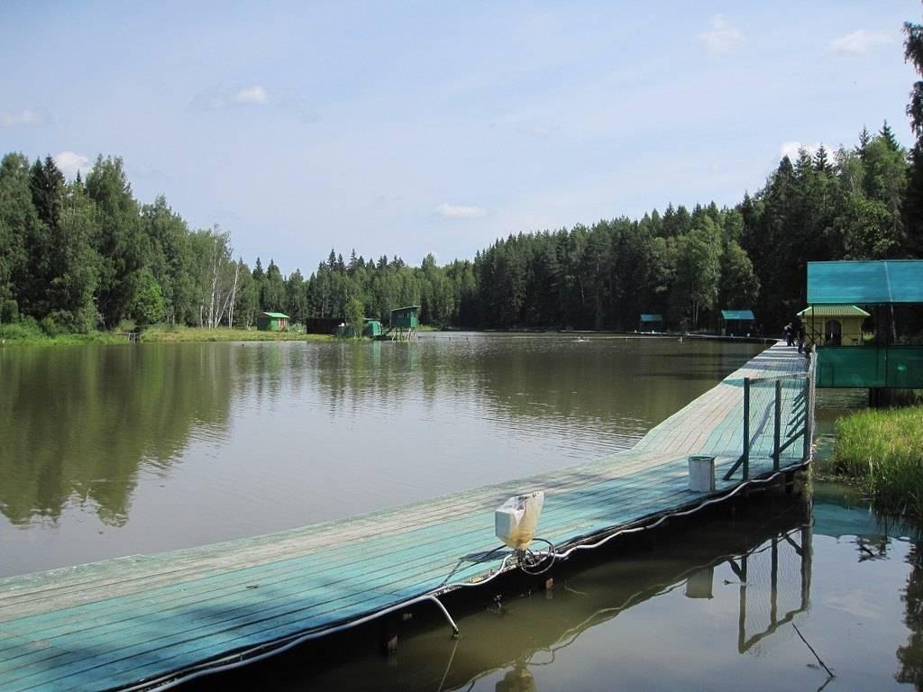 База «триал русская рыбалка» в подмосковье