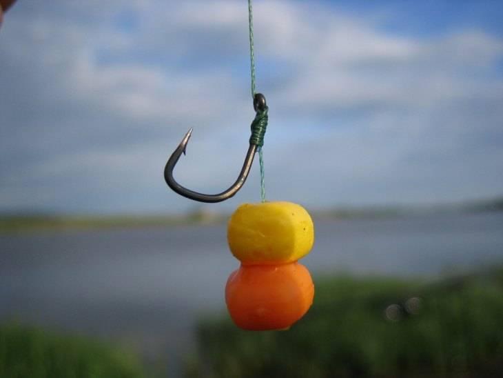 Какая кукуруза подходит для рыбалки и как на нее ловить рыбу?