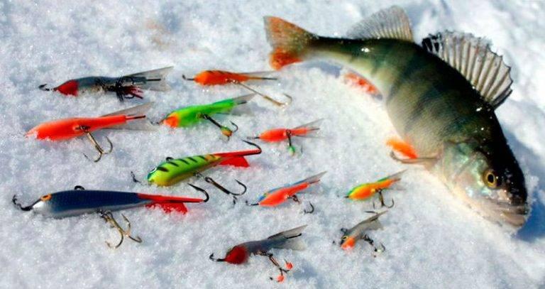 Ловля окуня зимой на балансир. цвет, тип и размер приманки