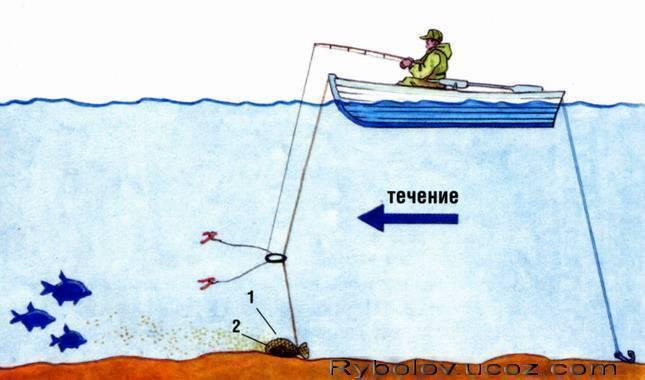 Рыболовная сеть на резинке. как ловить на дорожку и подготовиться к рыбалке данным способом