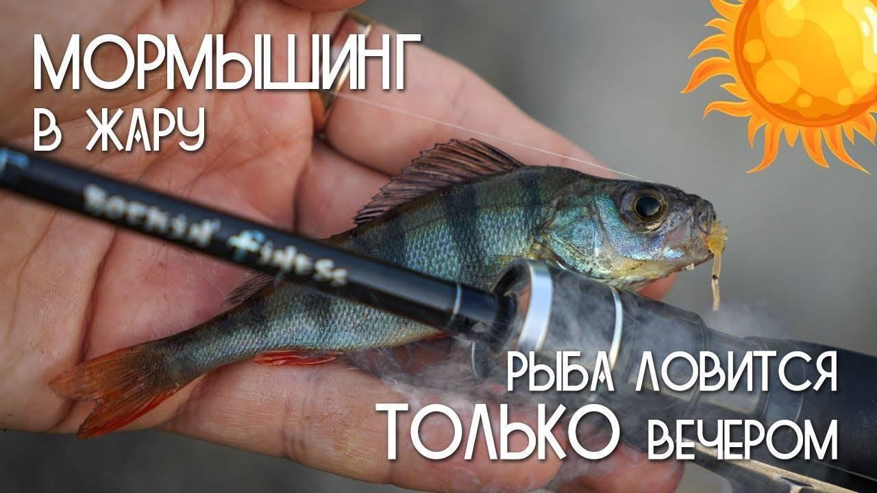 Мормышинг (30 фото): на ультралайт для начинающих, оснастка для ловли спиннингом на мормышку, рыбалка на летнюю мормышку, выбор приманки