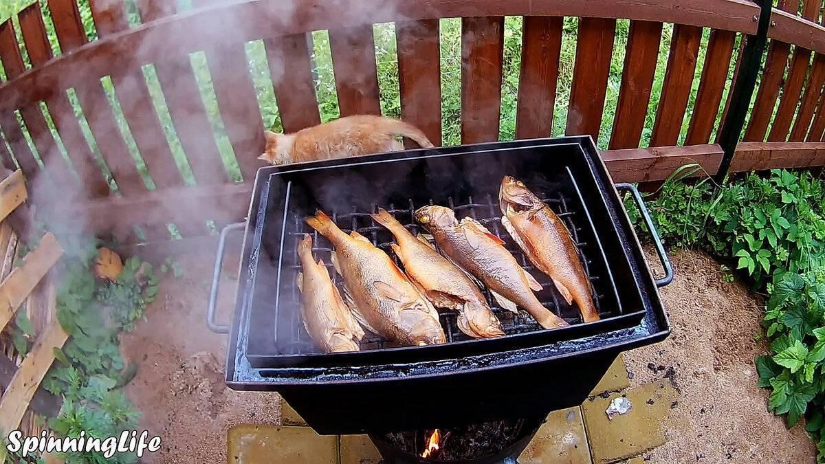 Морской окунь горячего и холодного копчения: рецепты приготовления
