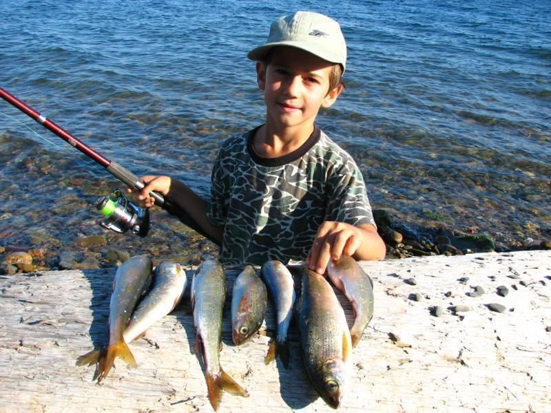 Летняя и зимняя рыбалка на байкале, где лучшие места?