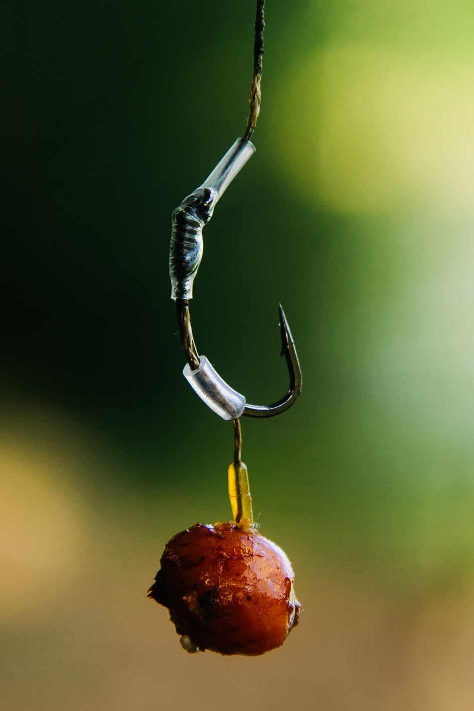 Самые лучшие приманки на сазана - как готовить бойлы, какие животные и растительные наживки и насадки выбирать