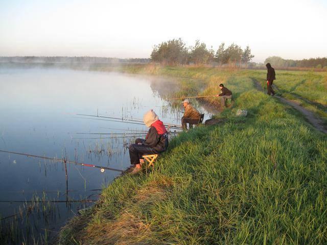Платная рыбалка, обзор 8 — 14 июня