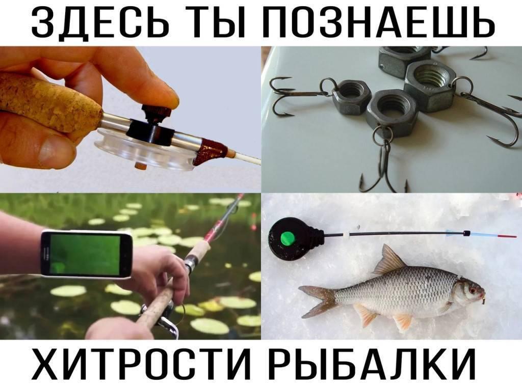 Все секреты при ловле карася, чтобы улов был отменным