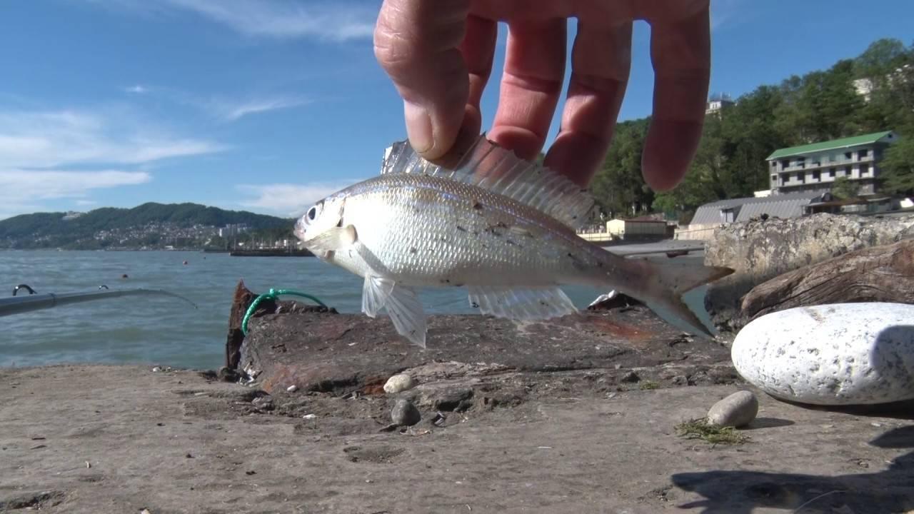 Осенняя рыбалка в геленджике