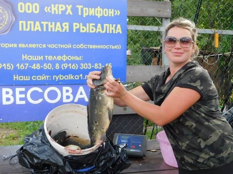 Платная рыбалка и рыболовные туры в ростовской области