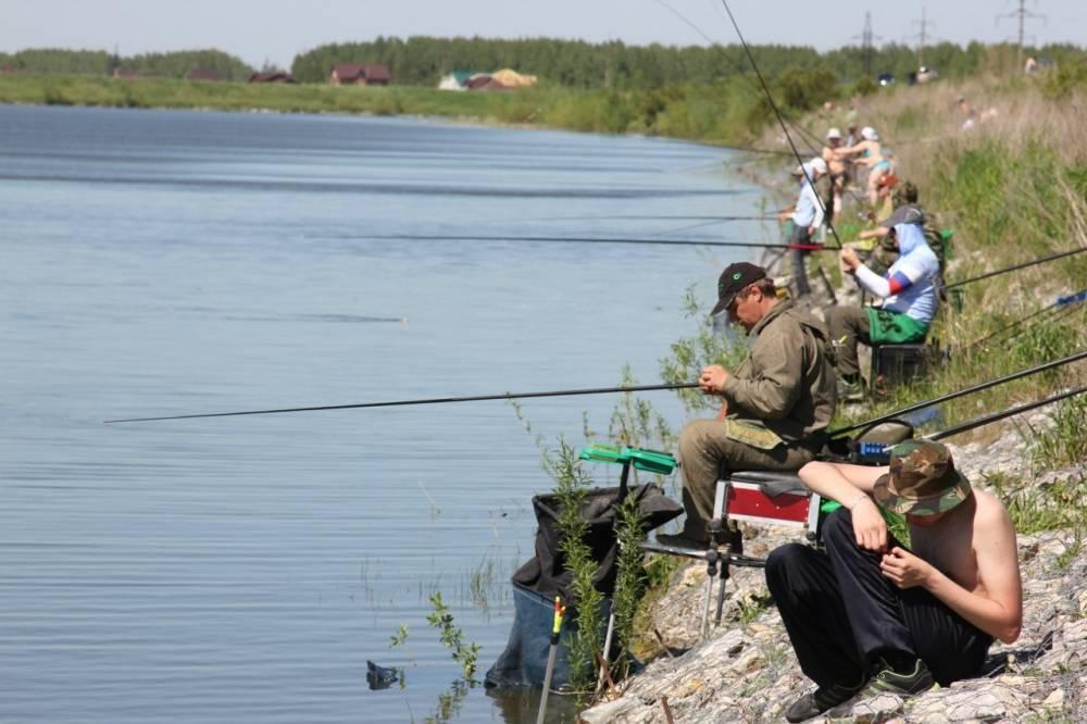 15 лучших рыболовных мест в тамбовской области. платные и бесплатные