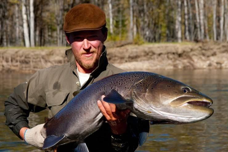 Ловля тайменя на горных реках: особенности рыбы и как ловить
