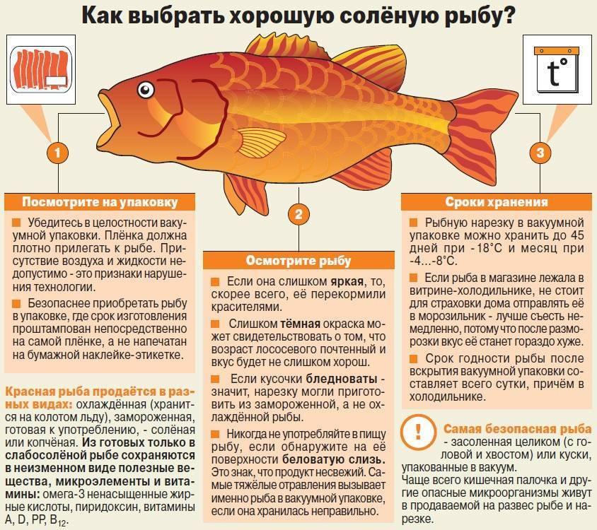 Масляная рыба: что это за рыба, описание, где водится, фото, польза, как приготовить
