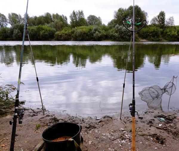 Рыбалка в ростовской области в 2020 году и ростове-на-дону сегодня - запрет, базы отдыха, платная рыбалка