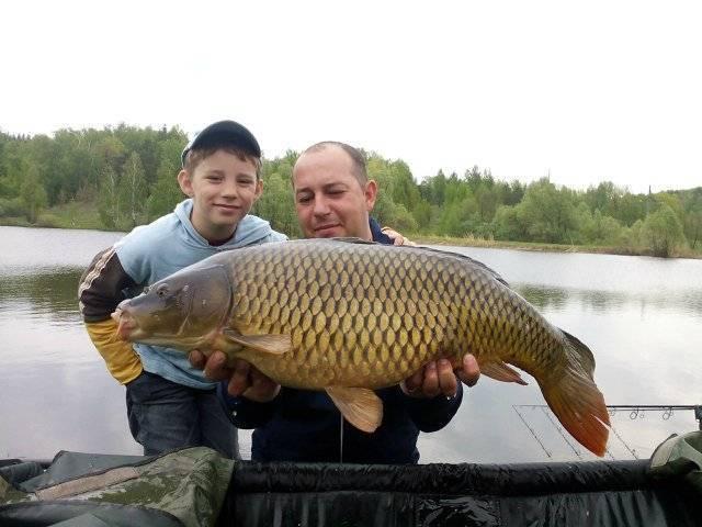 Места для рыбалки в ульяновской области – платная и бесплатная рыбалка!