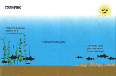 Если рыба не клюёт - факторы влияющие на клёв рыбы