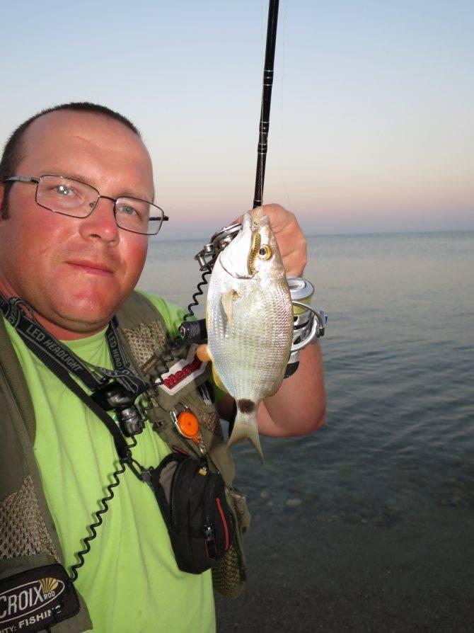 Рыбалка в Евпатории с берега в августе и другие месяцы