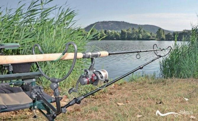 Советы и рекомендации по выбору фидерного удилища – рыбалке.нет