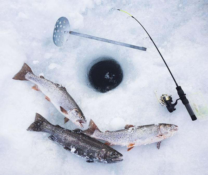 Рыболовные удочки и другие снасти для удачной зимней рыбалки