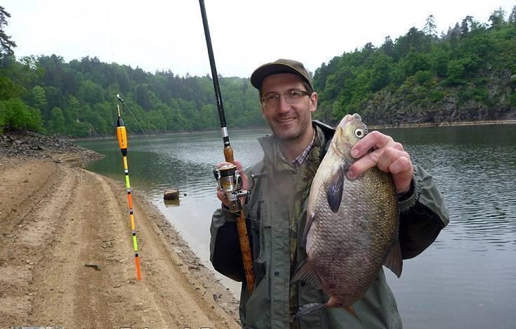 Ловля усача: на что клюет? рыбалка осенью на реке на кубань и летом, на донку с берега и другими снастями, способы и наживки