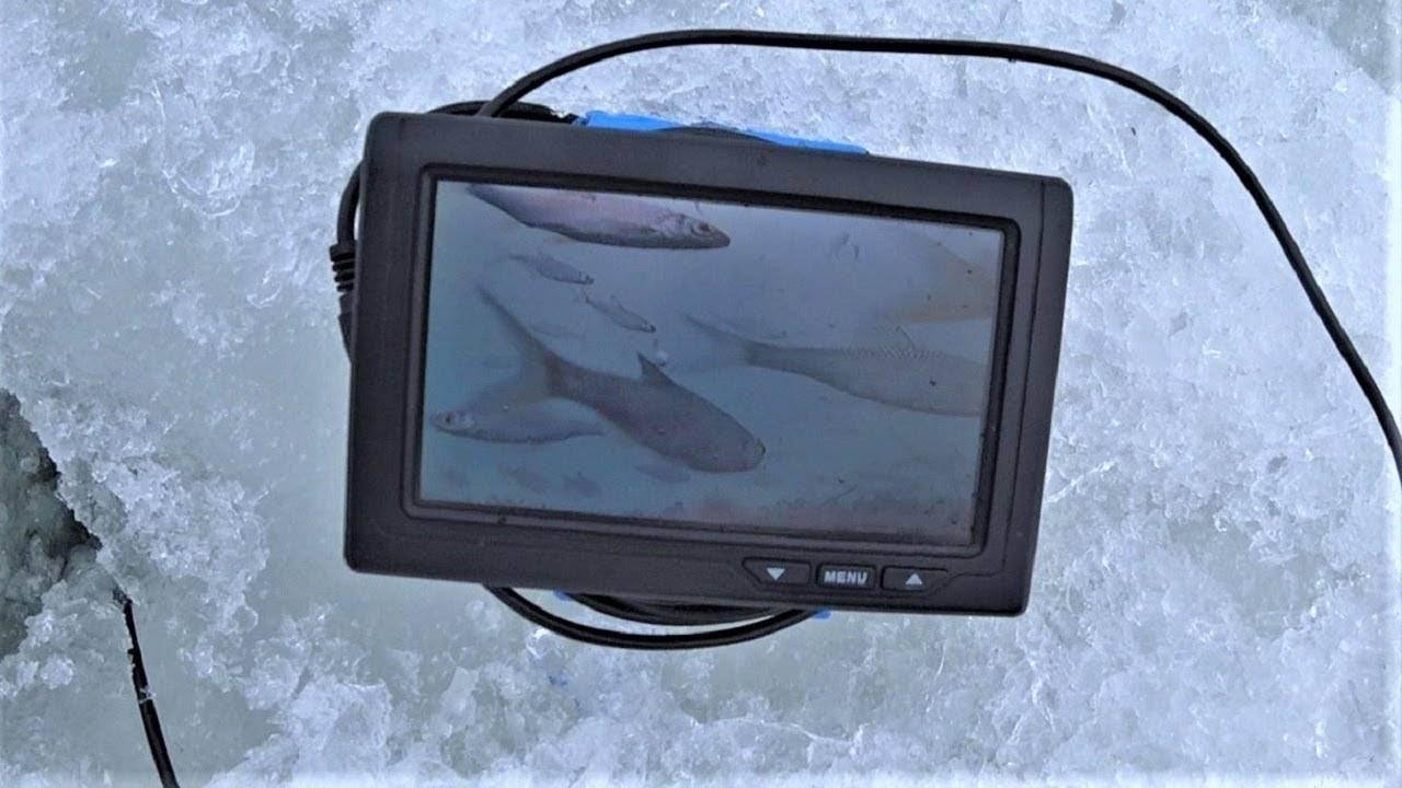 Подводная камера для зимней рыбалки своими руками: как собрать в домашних условиях и какие нюансы учитывать