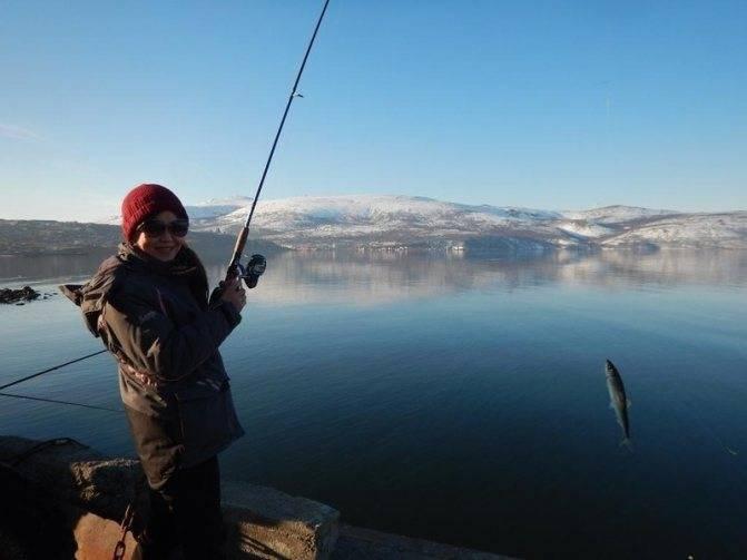 Рыбалка на волге в астраханской области: секретные места и полезные советы | рыбная ловля на волге