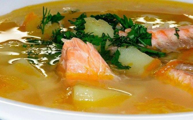 Диетический рыбный суп, 9 простых рецептов